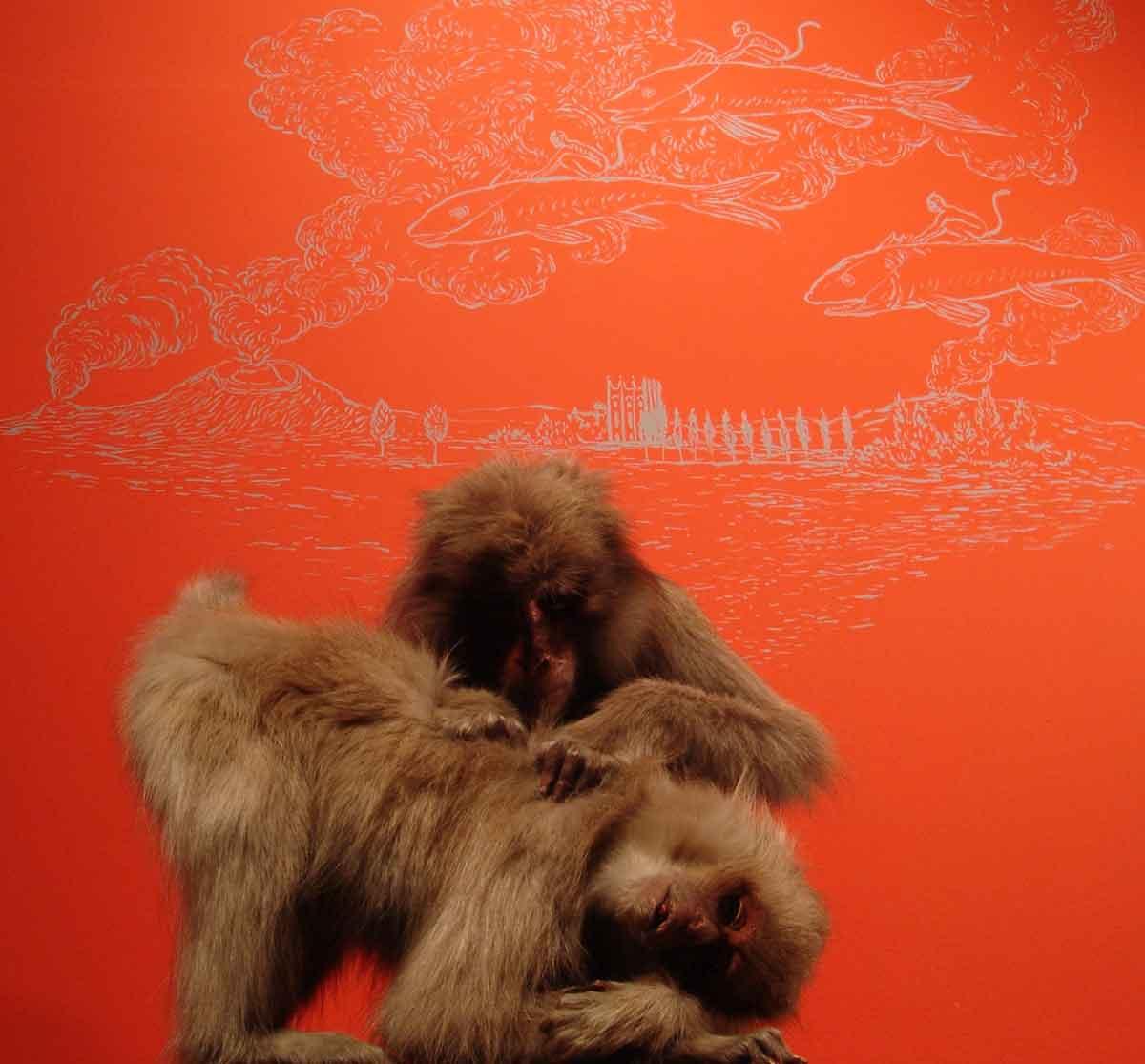 les-poux-des-macaques - philippe poirier